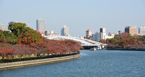 spot_sakuranomiya
